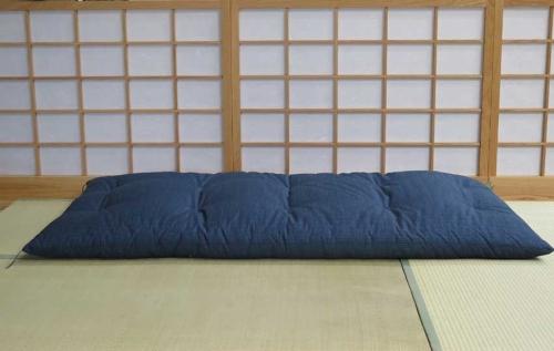 Blue-Single-Futon-Flat